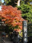 円覚寺入口.jpg