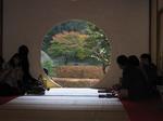 茶室越しの紅葉.jpg